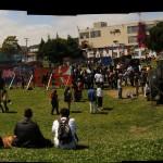 uyaf.lawn.2